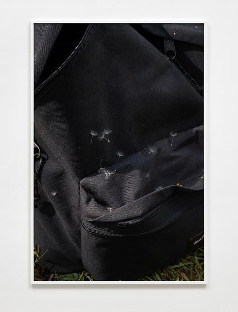 Paul Hutchinson, 'Eastpak, dandelion seeds', 2020, Photography, Inkjet print, Sies + Höke