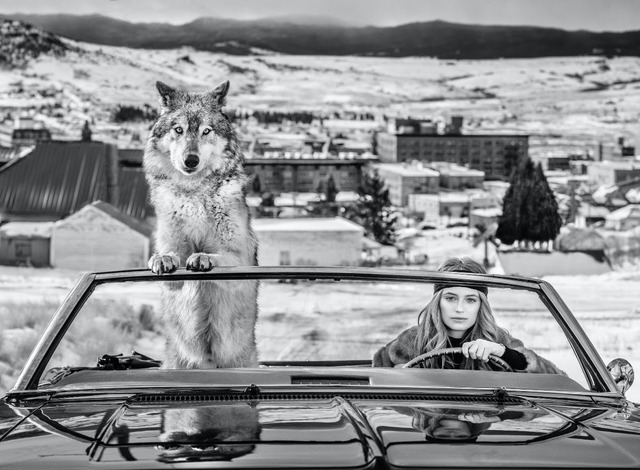 David Yarrow, 'Bonnie and Clyde', 2020, Photography, Digital Pigment Print on Archival 315gsm Hahnemuhle Photo Rag Baryta Paper, Isabella Garrucho Fine Art