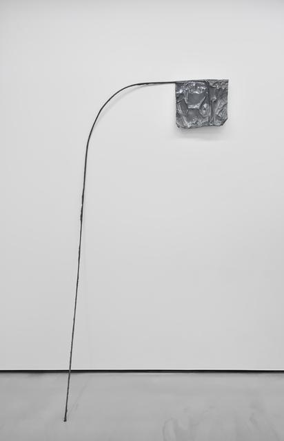 , 'Flag Series,' 2014, Galerie Christophe Gaillard