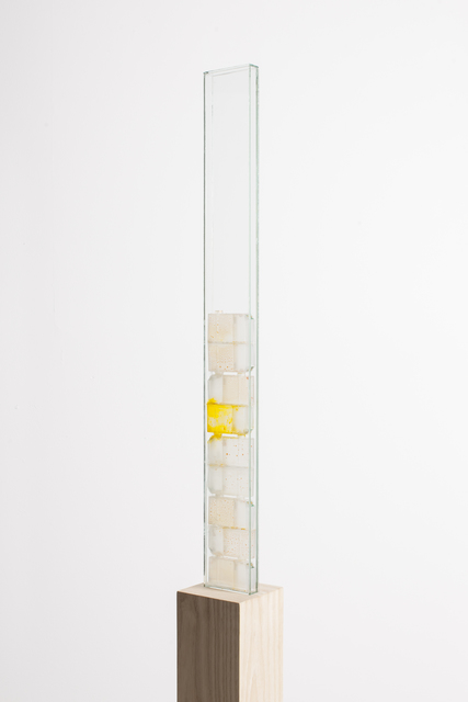 , 'Moist (yellow) II,' 2014, Whitehouse Gallery