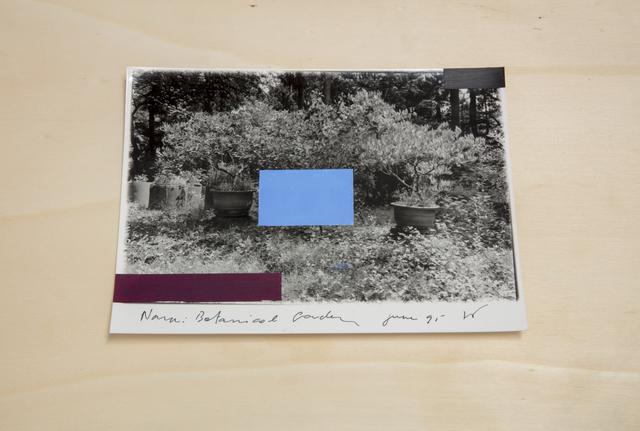 , 'Nara Botanical Garden,' 1995, Tatjana Pieters