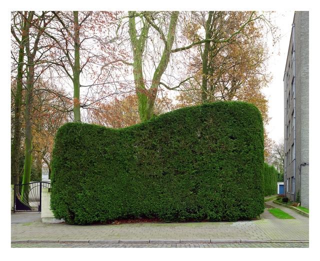, 'Haag,' 2014, Annie Gentils