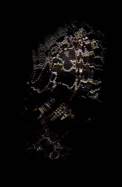 , 'Veiled Skull,' 2012, Dellasposa