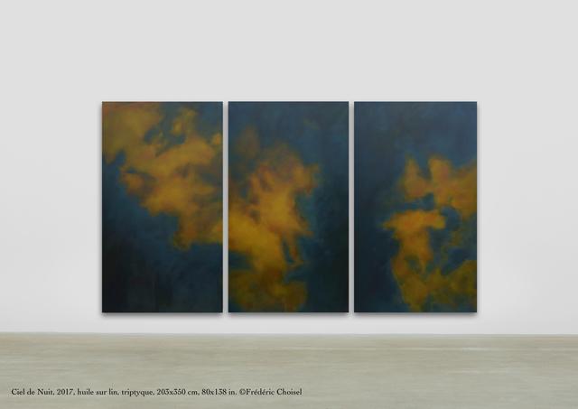 Frédéric Choisel, 'Ciel de Nuit/ Triptych', 2017, Andra Norris Gallery