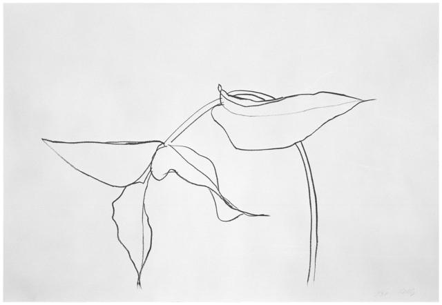 , 'Philodendron 1,' 1984, Gemini G.E.L. at Joni Moisant Weyl