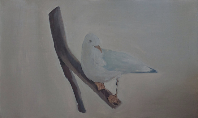 , 'Stuffed bird,' , H.L.A.M.