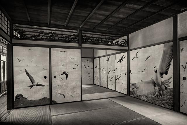 Kenji Wakasugi, 'Flock', 2016, Ippodo Gallery