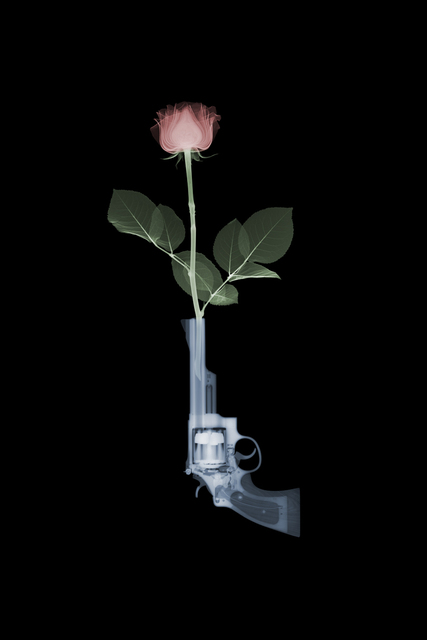 , 'Guns' n' Roses,' 2018, Samuel Owen Gallery