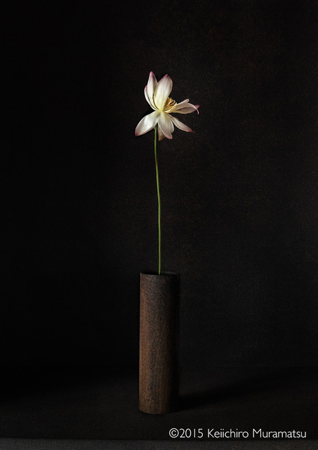 , 'A Stage Lotus 7-2,' 2015, Galerie Marie-Robin