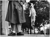 Elliott Erwitt, Paris, France (Dog jumping)