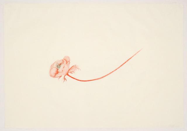 Valerie Hammond, 'Little Bird', 2011, Tamarind Institute
