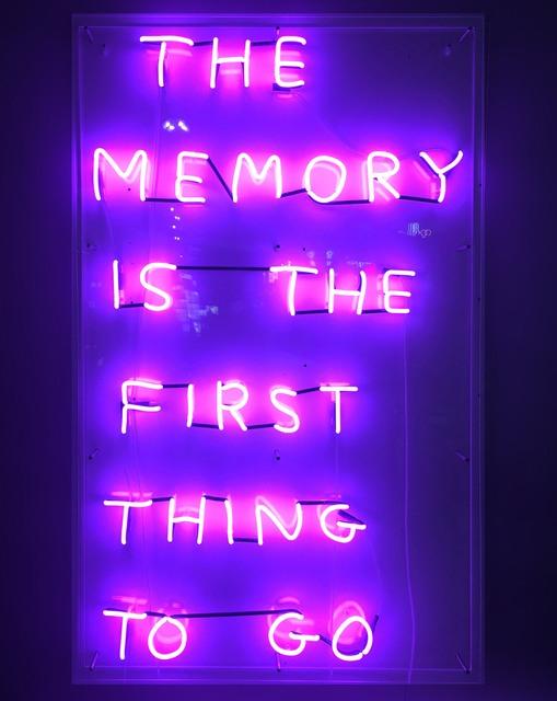 David Shrigley, 'The Memory', 2019, Galleri Nicolai Wallner
