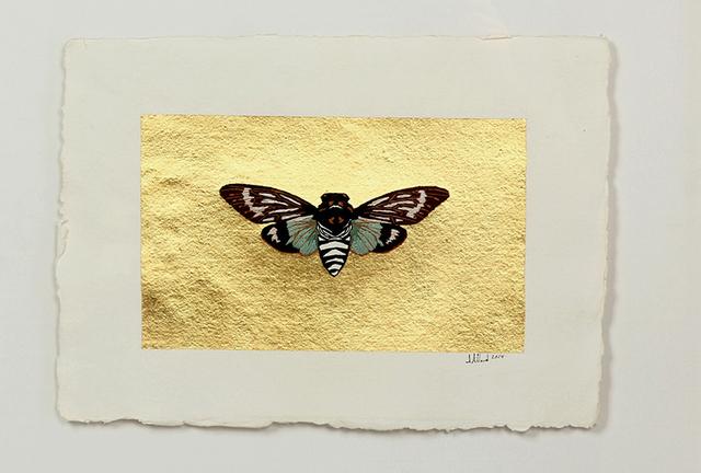 , 'Cicada Gold,' 2014, Artscoops