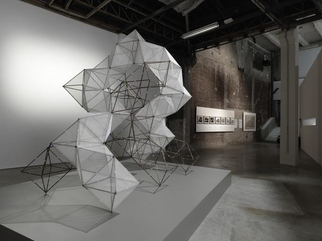 , 'Atrapanieblas Macrodiamante 781025,' 2014, Palais de Tokyo
