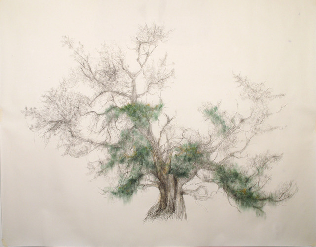 , 'Green Tree,' 2014, SPROVIERI