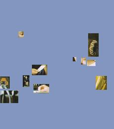 Best of Vermeer AP