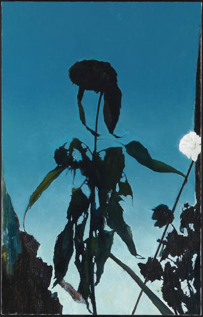 Glenn Sorensen, 'Sunflower', 2013-2014, Corvi-Mora
