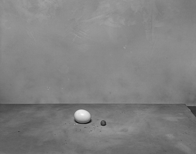 , 'Egg and Wax,' 2003, see+ Gallery
