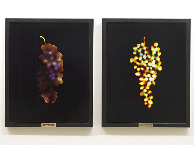 , 'Raisin blanc/ Raisin noir ,' 2014, Setareh Gallery