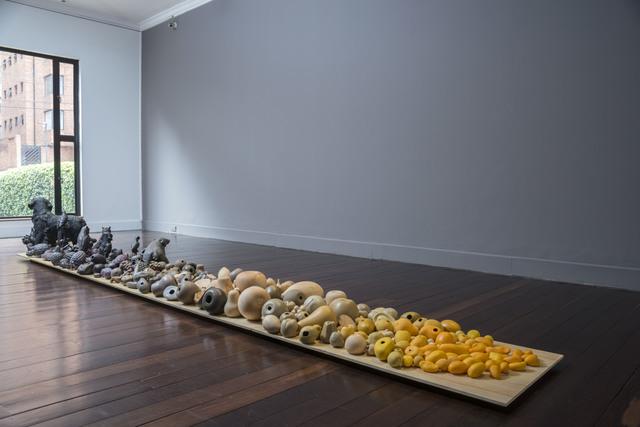 , 'Mangos, plumas y  cascaras vacías,' 2013-2017, Casas Riegner