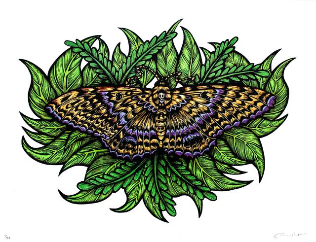 , 'Black Witch Moth (Silkscreen Print),' 2016, Paradigm Gallery + Studio