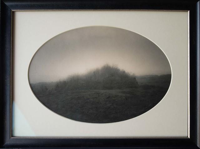 , 'Copse, Mt. Etna, Sicily, Italy,' , Etherton Gallery