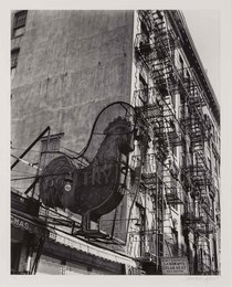 Poultry Shop East 7th Street, Manhattan