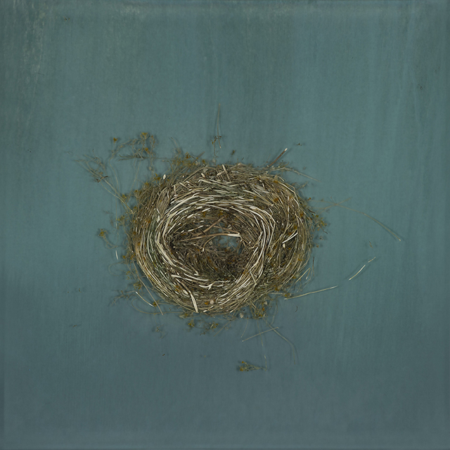 Mayme Kratz, 'Knot #334', 2018, Dolby Chadwick Gallery