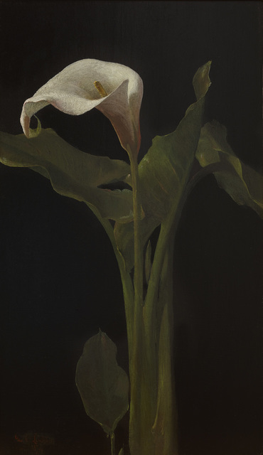 , 'Calla Lily,' 1874, Avery Galleries