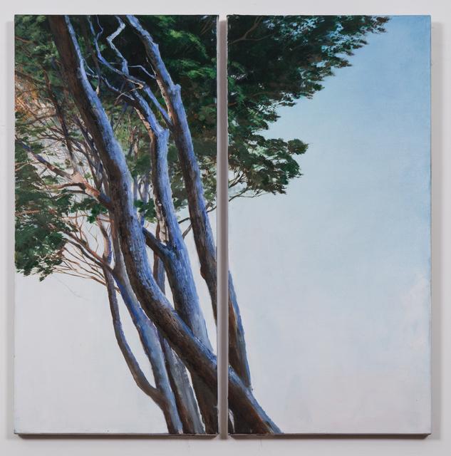 , 'Roman Pines,' 2015, Postmasters Gallery