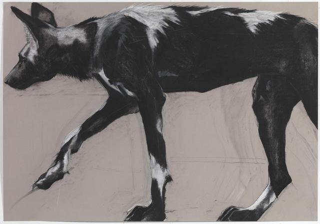 , '30. Wild Dog on Grey III,' , Sladmore