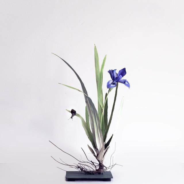 , 'Iris with Brown Snail,' 2019, Octavia Art Gallery