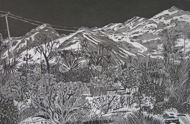 Kate Crook, 'Joshua Tree #7', 2017, Print, Lithograph, edition 50. Somerset white paper, acid free, Asher Grey Gallery