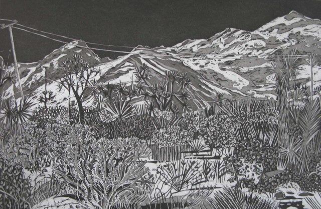 , 'Joshua Tree #7,' 2017, Asher Grey Gallery