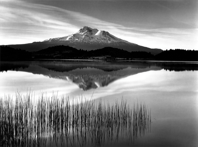 , 'Tule and Mt. Shasta,' 2017, The Ansel Adams Gallery