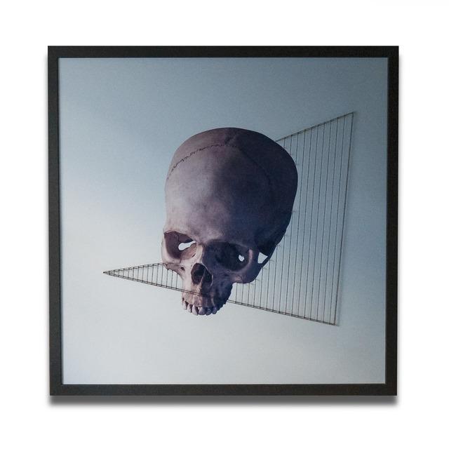 Rio Noir, 'Royal', 2019, Impact Art Gallery