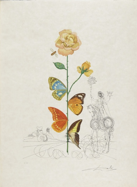 Salvador Dalí, 'Flora Dalinae (Michler & Löpsinger 227-236; Field 68-3 A-J)', 1968, Print, The complete portfolio, comprising ten etchings with drypoint and pochoir printed in colors, Sotheby's