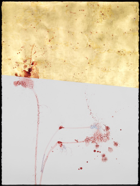 , 'Untitled #2  ,' 2014, Nature Morte
