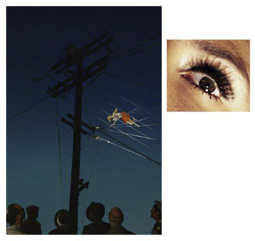 , '7:12pm Redcliff Ave, 2013  /  Eye #10 (Telephone Wires), 2013 ,' 2013, Yancey Richardson Gallery