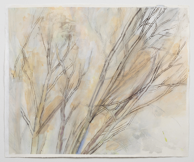 , 'The Pin Oak 10/12,' 2012, Alexander and Bonin