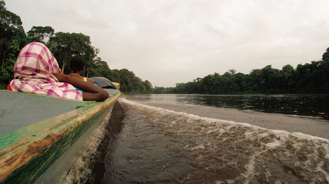 , 'Downriver Suriname from hinderlands ,' 2017, Emerson Dorsch