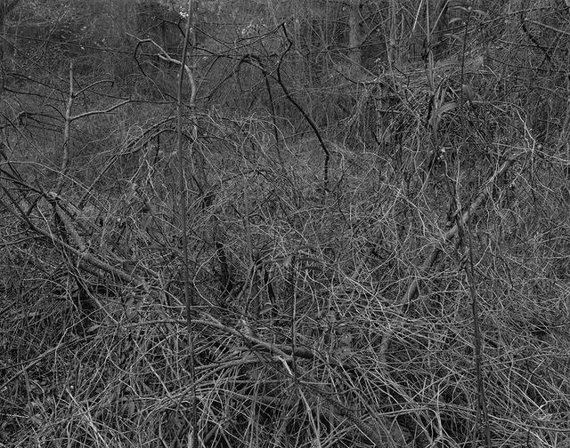 Gilbert Fastenaekens, 'Untitled #007', 1988-1996, Galerie Les filles du calvaire