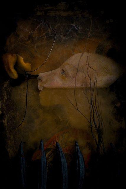 Eden Diebel, 'Piero 'The Gouty' ', 2016, The Directed Art Modern