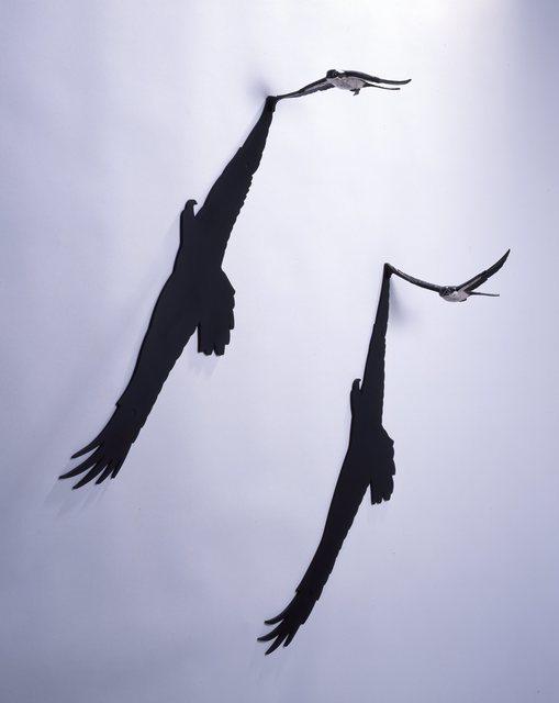 , 'Eagle's hearts,' , Shinseido