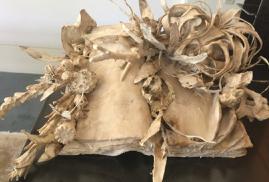 Jody Guralnick, 'Botany Book Volume 2', 2018, Skye Gallery Aspen