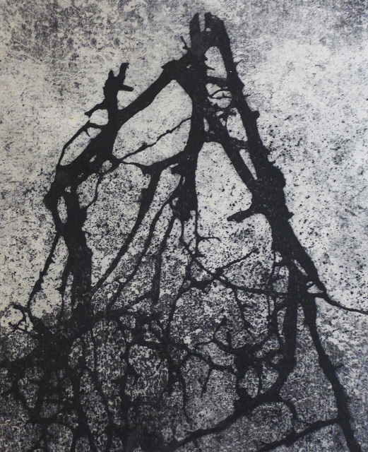 Bob Erickson, 'Deep in the Woods 14', 2019, Garvey   Simon