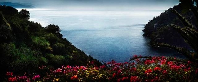 David Drebin, 'Portofino Flowers', 2013, Art Angels