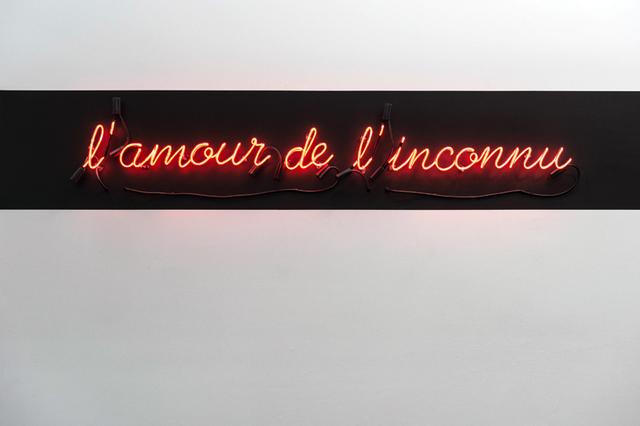 , 'l'amour de l'inconnu,' 2016, Galerie Antoine Ertaskiran