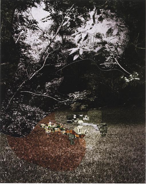 , 'Sapetuba,' 2009, Galería Joan Prats