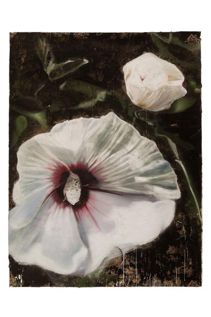 , 'Rose of Sharon,' 2012, Walter Wickiser Gallery